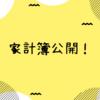 2019年1月1〜3週目の家計簿を公開!(1/1~1/19)
