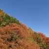 春色と秋色の対角線~京都・八瀬の里山より~