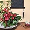 1月7日(月)のランチ膳&手作りケーキメニューです。