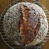 ローズマリー大麦お粥パン。