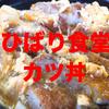 ひばり食堂のカツ丼は量だけじゃない、美味しいぞ!【高知県大豊町】