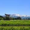 出羽神社を頂上にもつ羽黒山
