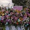 乃木坂46真夏の全国ツアー2019@神宮球場初日を見終えて(その2)ー人生をハッピーにするブログ