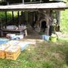 薪窯の窯詰め
