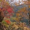 奈良:洞川温泉。紅葉。