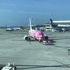 那覇空港でピンク色のジンベエジェット「新さくらジンベエ」に出会ったよ!