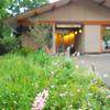 マイクロフォーサーズ用レンズ パナソニック ライカ DG SUMMILUX 15mm/F1.7 (H-X015-K) の作例。上野公園で撮影しました。