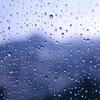 梅雨ですね・・・カビ対策していますか??