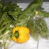 団地内での無農薬野菜の販売