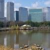 潮入の池(東京都中央)