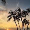 ハワイ島に来ています(^o^)