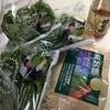 花粉症用に紫蘇ジュースを作りました