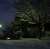 初冠雪⛄⛄