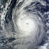 台風の中の通園。行かせるべきか休ませるべきか。
