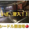 「海外で運転 in フランス」ブルターニュ・Dinan編 いざ、シードル醸造家へ突撃訪問!!