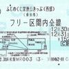 ふじのくに家康公きっぷ(西部)