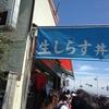 Wシラス丼(シラス+生しらす)を江ノ島のマイアミ貝新で食べてきた。美味しかった~