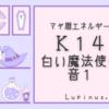 白い魔法使いの13日間が始まるよ(^-^)種まきに必要な許し 受容の期間です☆