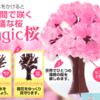 【Magic桜】女性や子供へのちょっとしたプレゼントにも最適!6時間で咲くMagic桜でエア花見も楽しい!咲かないこともあるかもチェック!【テレビでも話題】