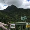 【旅行】ハワイ3日目【ジップライン】