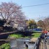 落合川とその支流をいくつか歩く