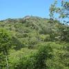西おたふく山から六甲最高峰 東高座堰堤に下る