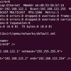 Ubuntu Server 13.04 amd64(2)