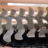 私がクジラ類の死骸を発見してから脊椎の骨格標本を作るまで【一部閲覧注意】