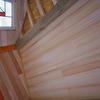 ツリーハウスの天井