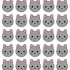 1匹だけ違う猫を探せ❗️
