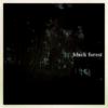 「black forest」Liner Notes