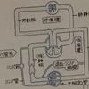【解剖学Ⅰ-9】循環器系