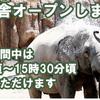 円山動物園とか金魚祭り