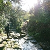 三浦半島最高峰の大楠山へ行く