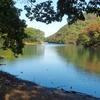 妙義湖(群馬県安中)