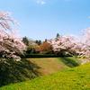 佐倉城(千葉県佐倉市)お城の基本情報やイベント、周辺施設の紹介/日本100名城