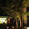 街路樹パオ♂