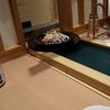【新しい生活様式】 おうち服の買い物と回転寿司