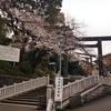 伊勢山皇大神宮の桜見てきた2019!