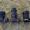 最近使っているカメラ機材(主にSONY APS-C Eマウントのレンズ)の話