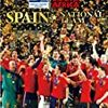 EURO2012、グループCはスペインとイタリア