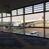 20レグ目 2017年4月JAL B772 搭乗記(福岡→羽田)