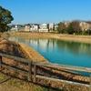 真菰池(愛知県東郷)