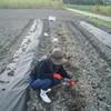 運玉畑にジャガイモとタマネギを植える