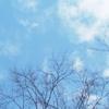 冬の青空。