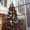 クリスマスの超本格オペラコンサート!