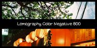 【フィルム】昼も夜も室内もこれで!Lomography Color Negative 800。