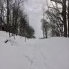 雪の中の自転車を見てから「肩甲骨」を動かす