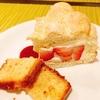 レポ!! 江口センセのガチンコお菓子教室 ~ビスキュイアラキュイエール&バニラ風味のババロア~