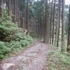 さくら咲く温泉(奈良県東吉野村)
